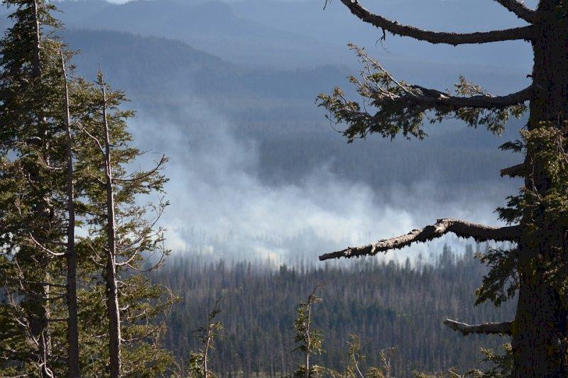 Свердловские десантники отправились на тушение лесных пожаров в Сибири