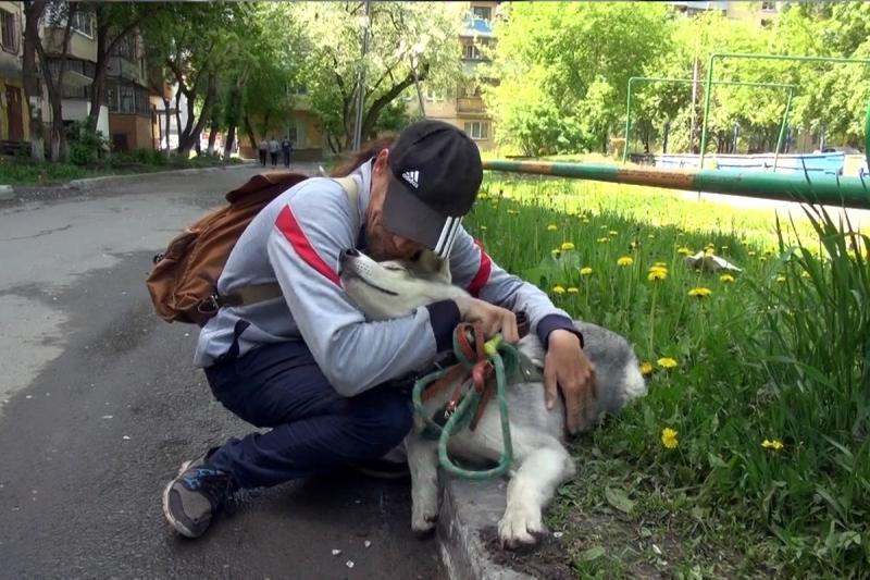 Инвалиду изТюмени вернули похищенную собаку