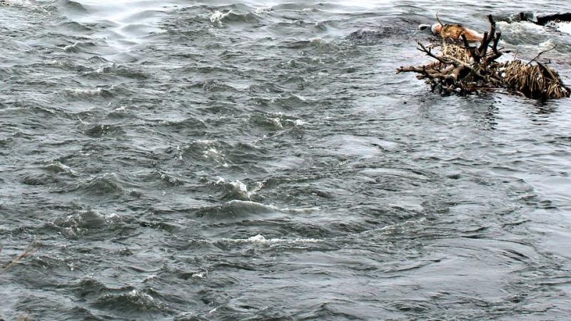 Реки Тюменской области возвращаются всвои русла