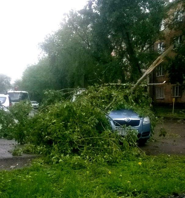 ВПерми циклон ломал деревья исрывал крыши сдомов