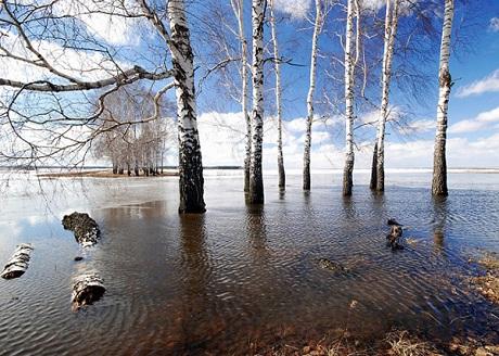 ВТюменской области остаются подтопленными около 900 дачных участков