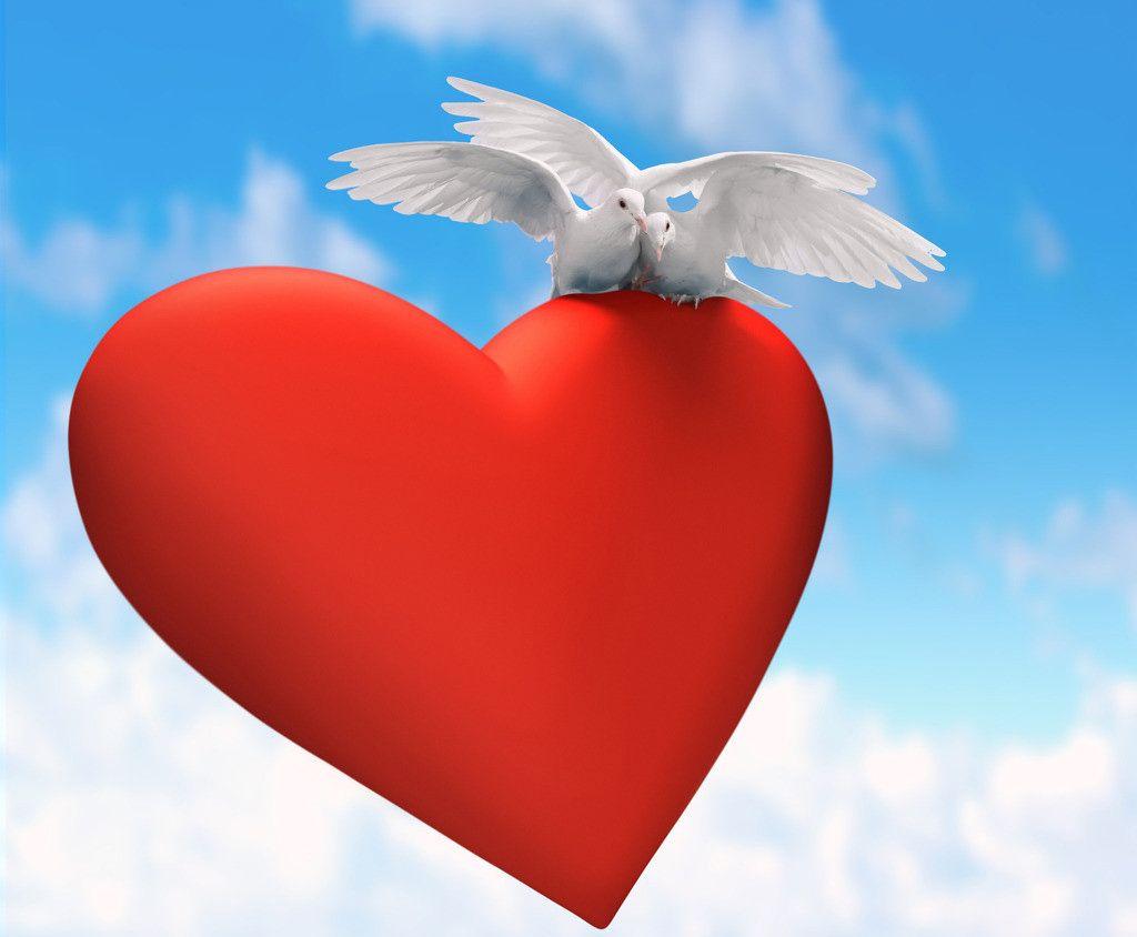 картинки сердце свободен бисквитмолочная